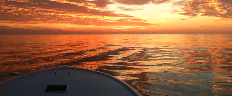 Outer banks charter fishing oregon inlet obx nc greg mayer for Oregon inlet fishing charters